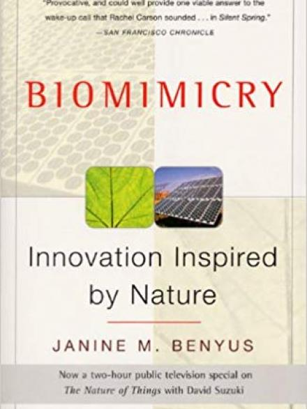 Biomimicry : innovation inspired by nature by Janine Benyus